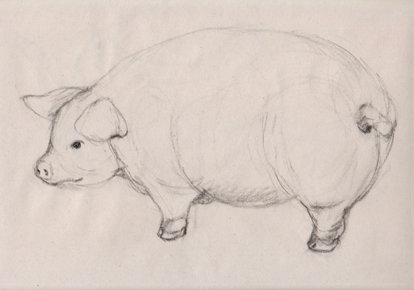 little mad piggy sketch from plaster cast at 596