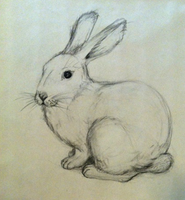 rabbit sketch from plaster cast at 596